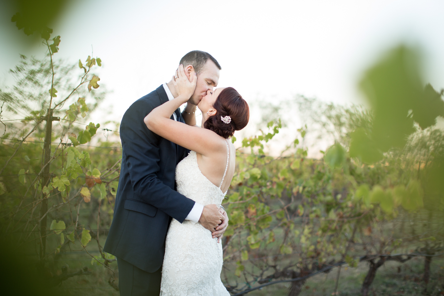 vineyard portraits at jacuzzi winery