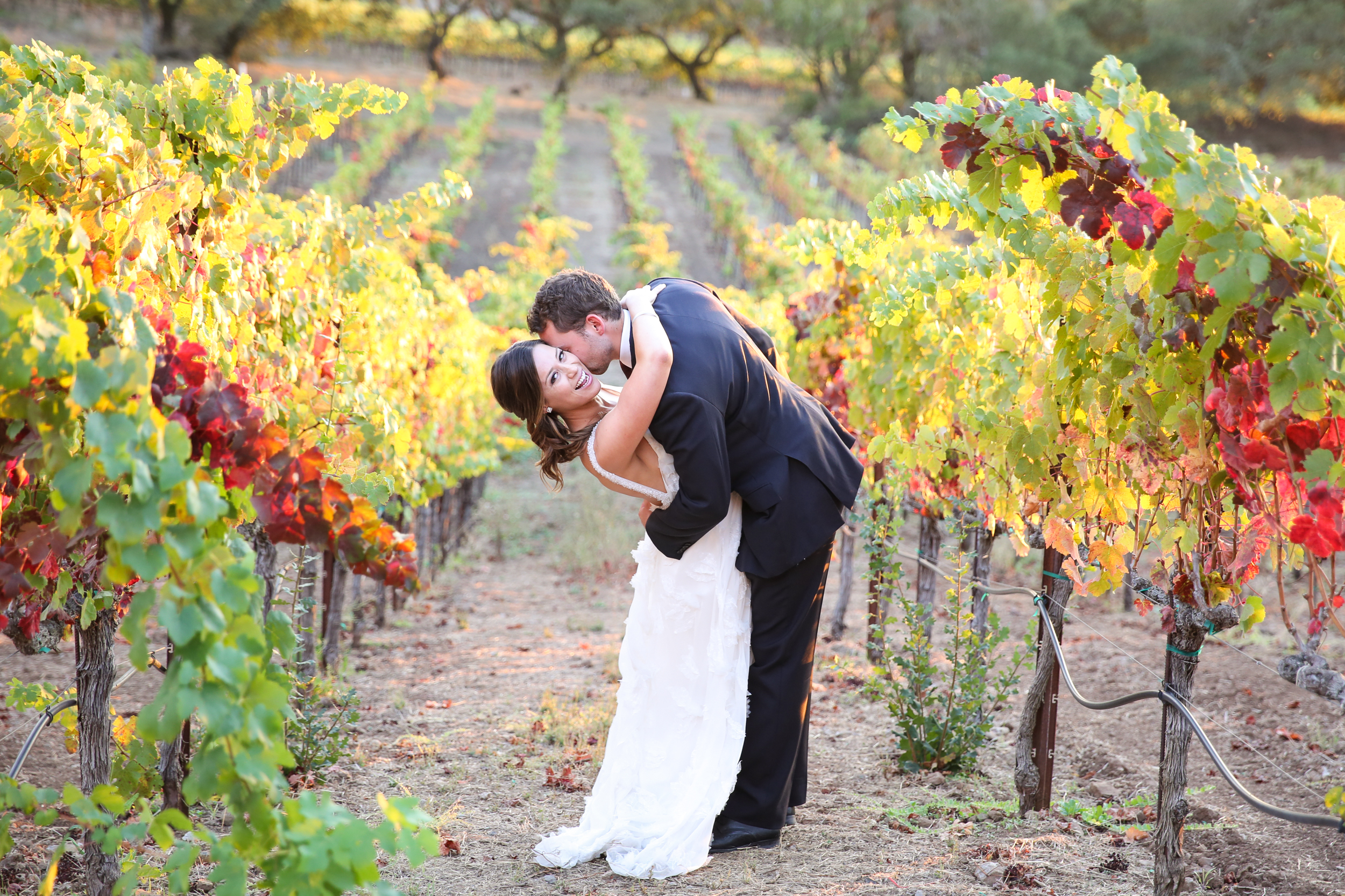 paradise ridge winery wedding photographer